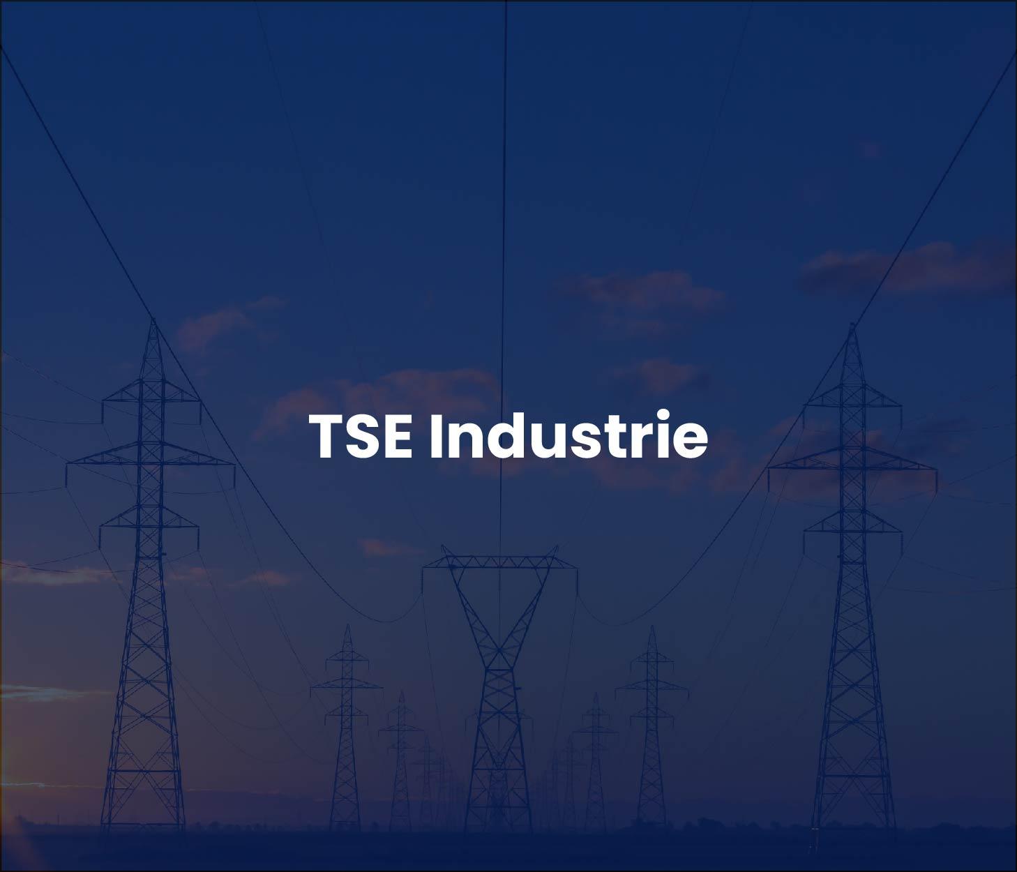 TSE Industrie